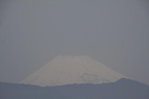 _MG_1540.jpg 5.4-10.27-富士山1.jpg