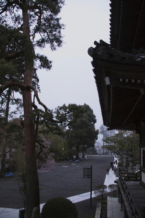 身延山の朝-1.jpg