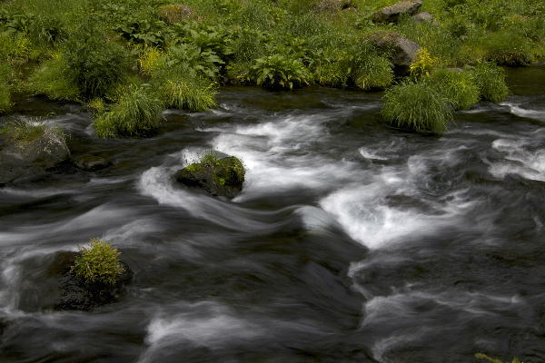 白糸の滝-2 .jpg