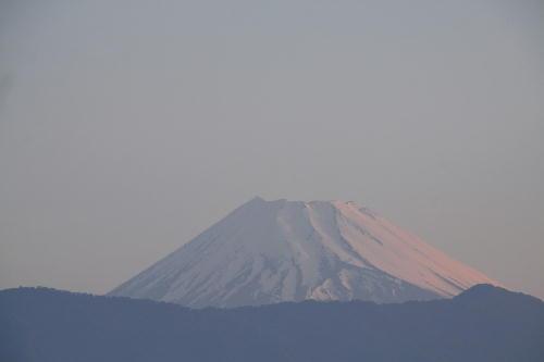 _MG_1713.jpg 5.18-4.49-今朝の富士山.jpg