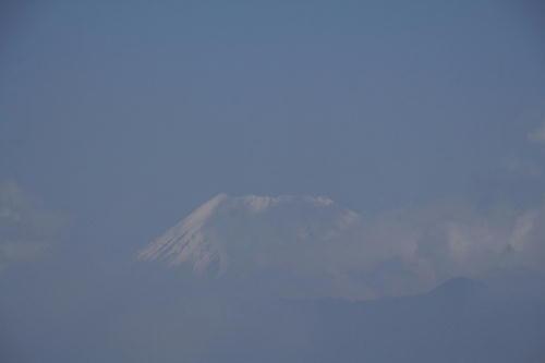 _MG_1747.jpg 5.21-11.08-今朝の富士山.jpg