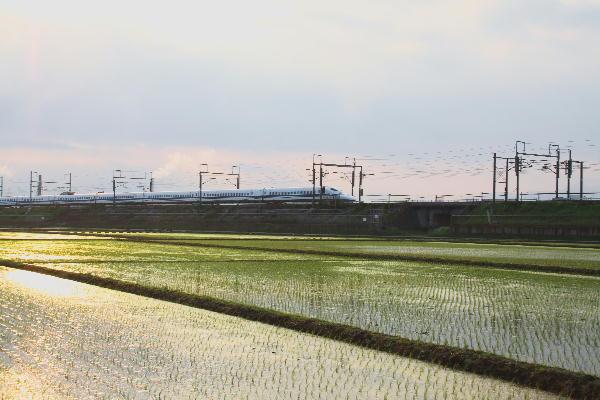 新幹線-2.jpg