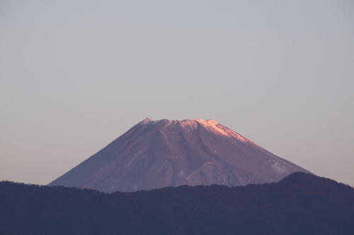 _MG_4784.jpg 11.6-6.16-今朝の富士山.jpg