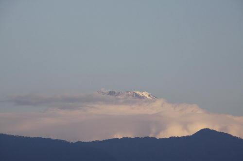 _MG_4836.jpg 11.8-7.04-今朝の富士山-2.jpg