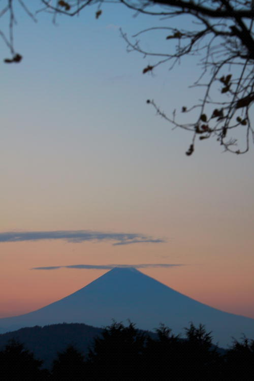 _MG_4833.jpg 夕暮れ富士山-833-1.jpg