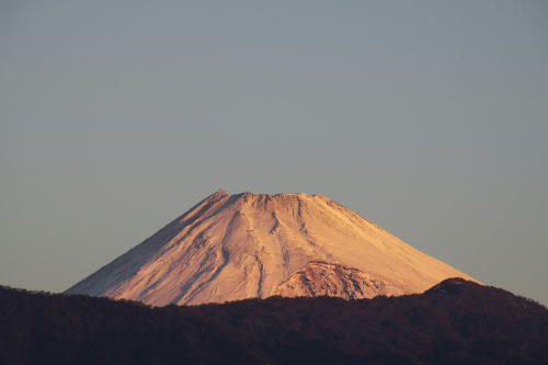 _MG_5082.jpg 11.19-6.29-今朝の富士山.jpg