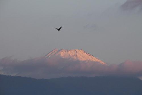 IMG_0861.jpg 11.25-6.43-今朝の富士山.jpg