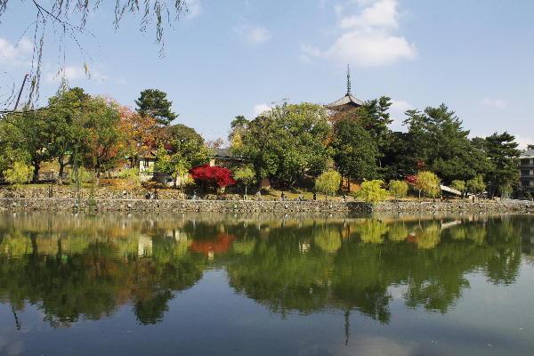 猿沢の池-2.jpg
