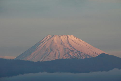 IMG_2386.jpg 12.6-6.49-今朝の富士山.jpg