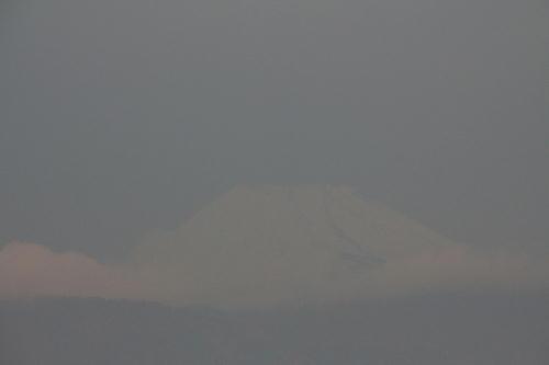 IMG_2394.jpg 12.7-7.16-今朝の富士山-3.jpg