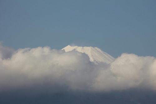 IMG_2551.jpg 12.22-13.04-富士山.jpg