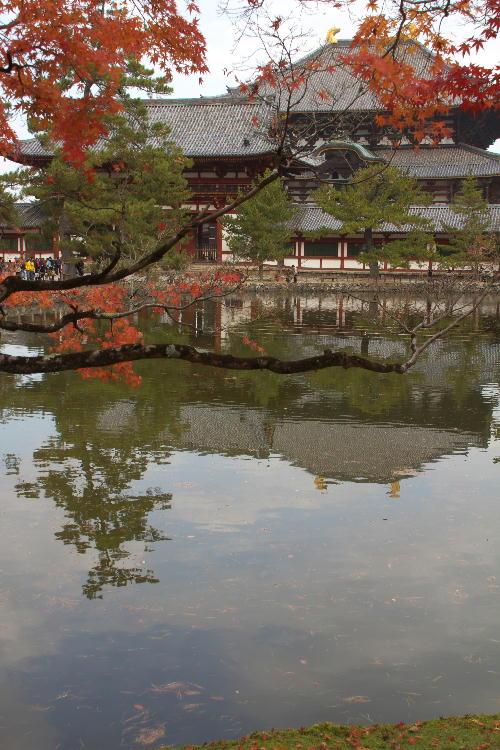 大仏殿-2.jpg