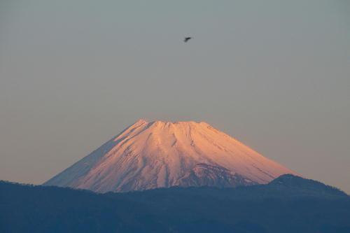 IMG_3003.jpg 1.12-7.00-今朝の富士山1.jpg