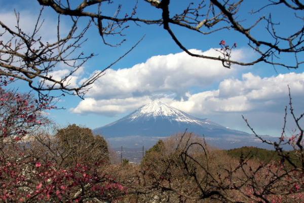 岩本山-5.jpg