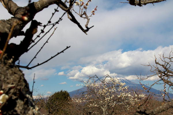 岩本山-7.jpg