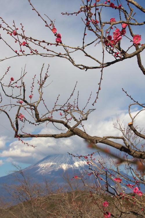 岩本山-6.jpg