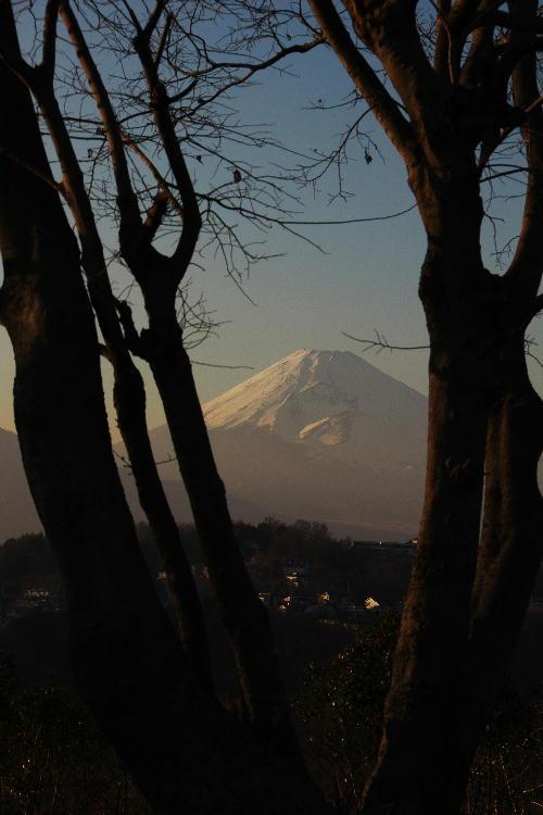 函南の富士山-16.58.jpg