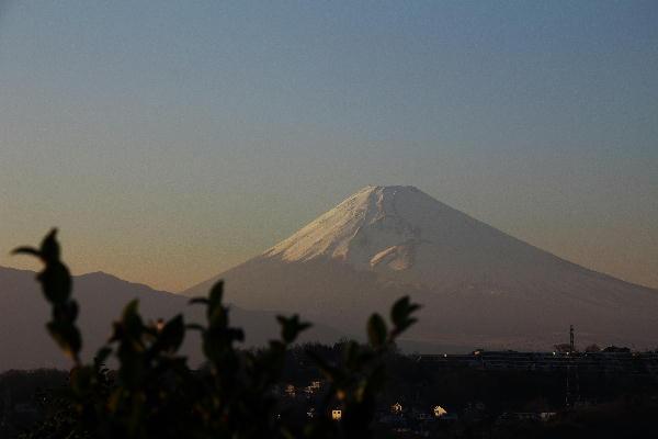 函南の富士山-17.00.jpg