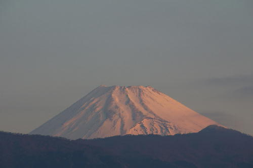 IMG_4510.jpg 3.5-6.26-今朝の富士山1.jpg
