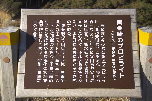 _MG_5251.jpg 黄金崎プロピライト-251.jpg