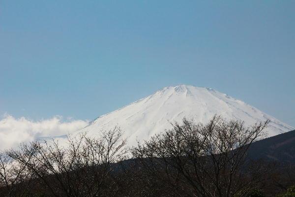 富士霊園から.jpg