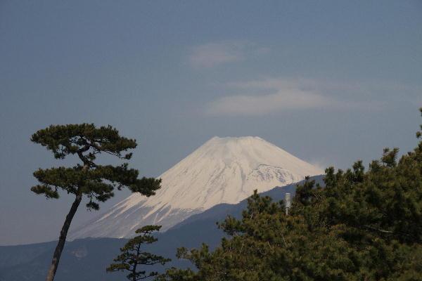 IMG_4932.jpg 3.25-11.13-千本浜の富士山.jpg