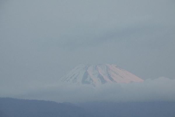 _MG_5335.jpg 4.7-5.26-今朝の富士山1.jpg