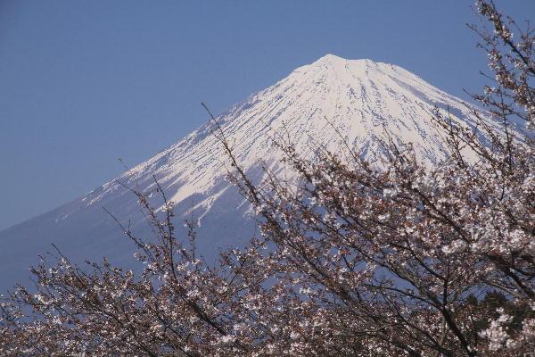岩本山-2.jpg