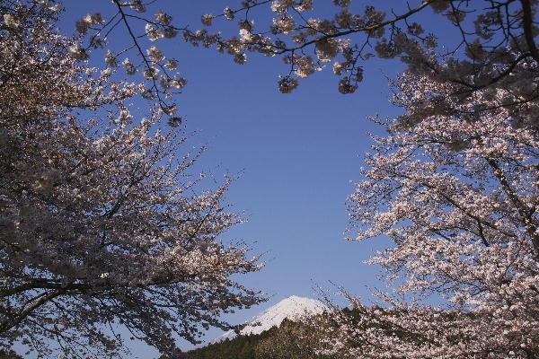 岩本山-3.jpg