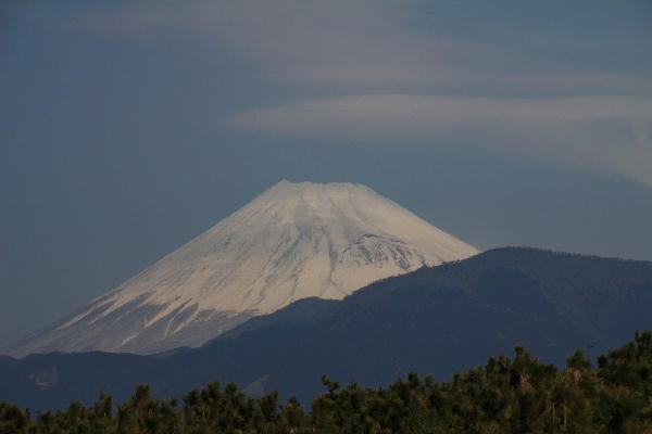 IMG_4921.jpg 3.25-10.52 千本浜の富士山.jpg