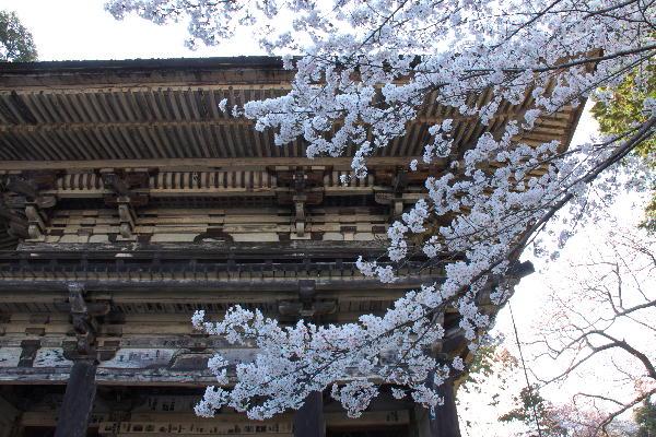 三井寺-18.jpg