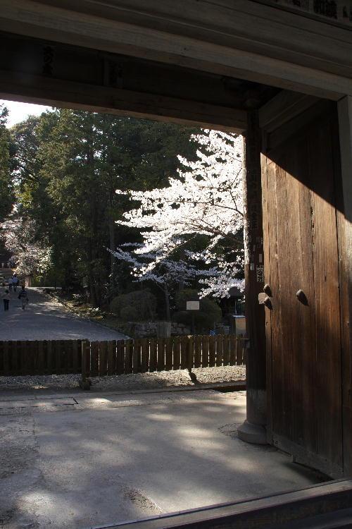 三井寺-19.jpg