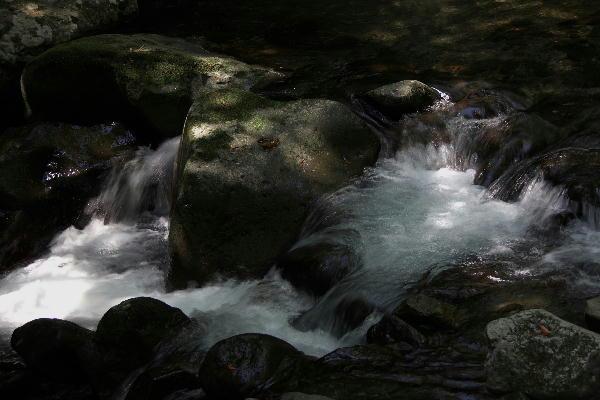 渓流-1.jpg