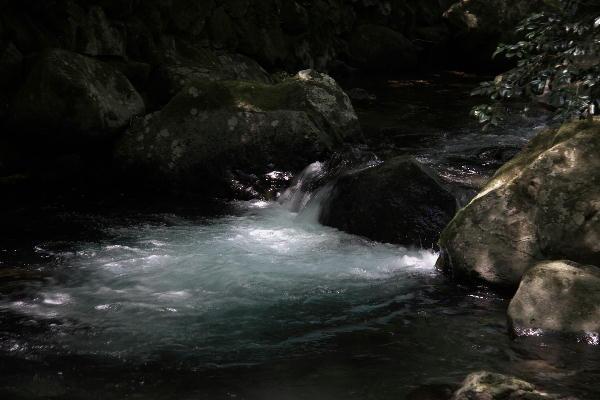 渓流-2.jpg