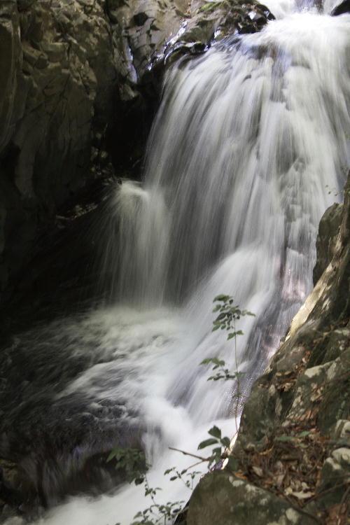 滝-2.jpg