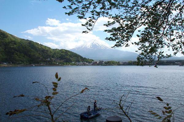 2011 5.14 河口湖-1.jpg