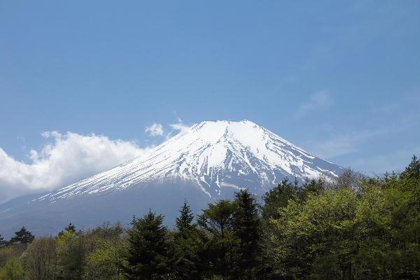 2011 5.14 富士山.jpg