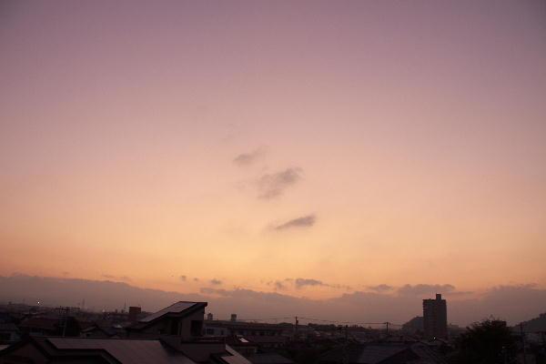 IMG_9039.jpg 8.29-5.01-日の出前.jpg