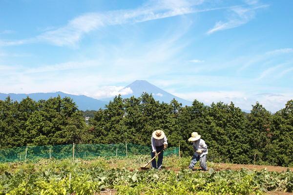 富士山と老夫婦.jpg