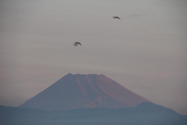 IMG_9275.jpg 9.8-5.20-今朝の富士山.jpg