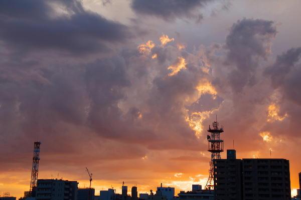 IMG_9658.jpg 9.22-17.37-夕焼け1.jpg