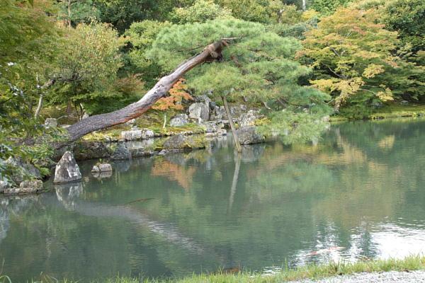 天竜寺7.jpg