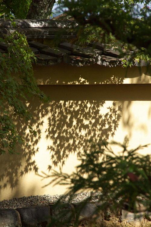 天竜寺11.jpg