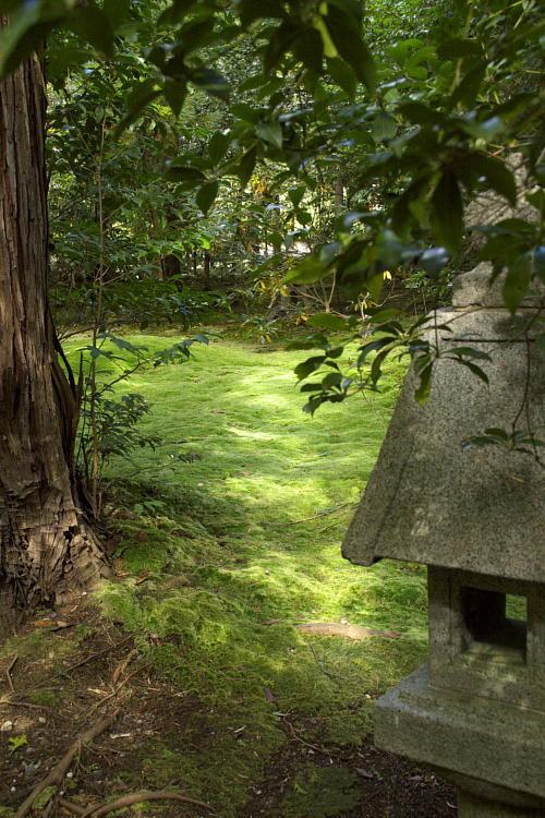 野宮神社-2.jpg