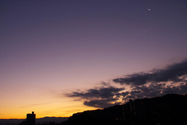 IMG_1049.jpg 11.22-6.10-夜明け前.jpg