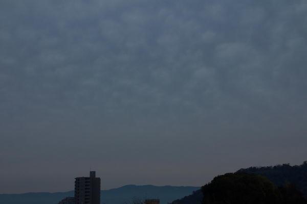 IMG_1309.jpg 11.28-6.42-今朝の東の空1.jpg
