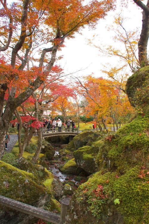 箱根美術館-1   11.26.jpg