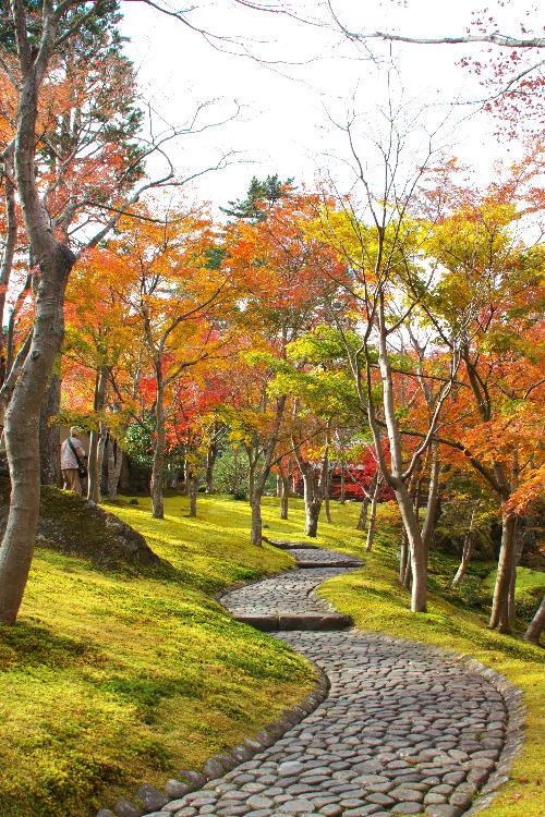 箱根美術館-1-1 11.26.jpg