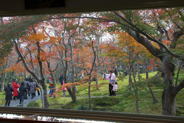 箱根美術館-11  11.26.jpg