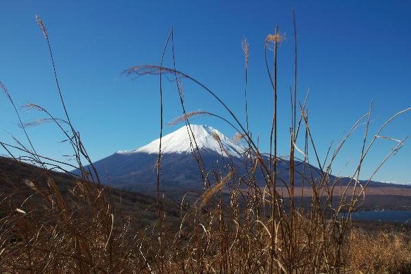 富士五湖-3 山中湖.jpg